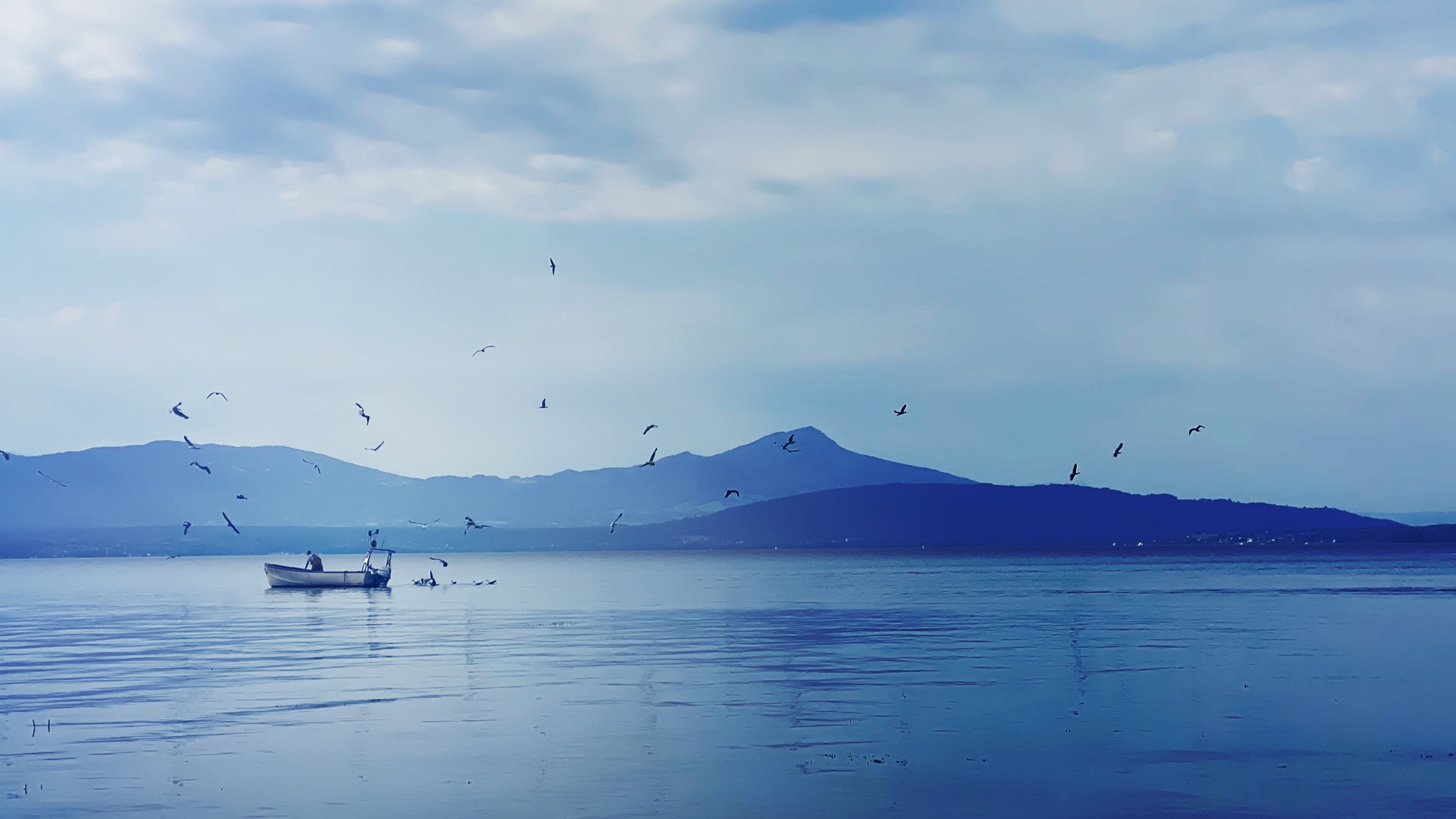 Fishing boat with gulls circling above on a background of mountains