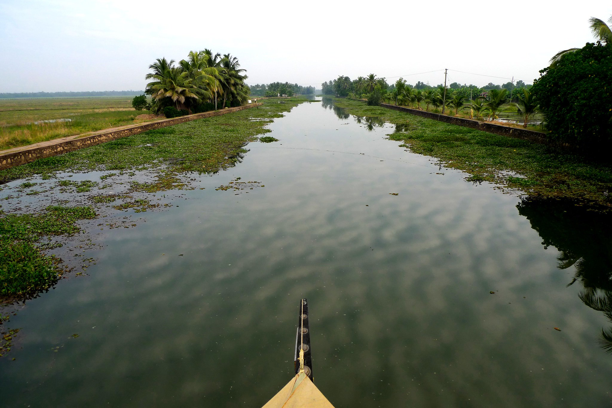 View of the Kerala backwaters
